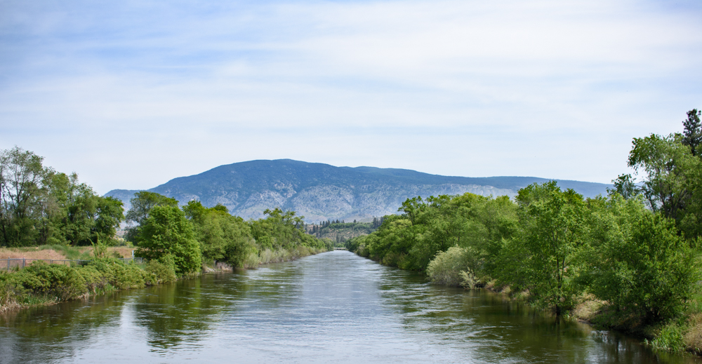 Oliver_Irrigation_Canal_May